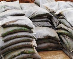 ガーデニング初心者の肥料の選び方